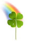 Shamrock and rainbow Stock Image