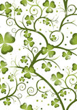 Shamrock repeat 1 Stock Images