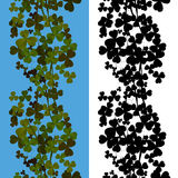 Shamrock seamless design Stock Images