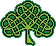 Shamrock. Tatuagem celta ornamentado ilustração royalty free