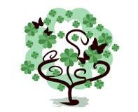 Free Shamrock Tree Stock Images - 50372894