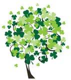 Shamrock Tree Royalty Free Stock Photo