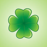 Shamrock1 Stock Images