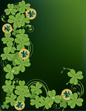 Shamrocks Stockbild