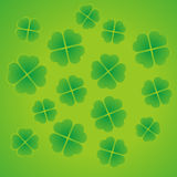 shamrocks Image stock