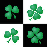 Shamrocks Black White Background Royalty Free Stock Images