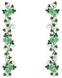 Shamrocks e rosas do dia do St Pattys Imagens de Stock Royalty Free