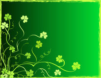 Shamrocks foliage Royalty Free Stock Photos