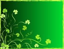 Shamrocks foliage. Decorative green shamrocks foliage design Royalty Free Stock Photos