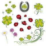 Shamrocks, ladybug, клевер Стоковая Фотография RF