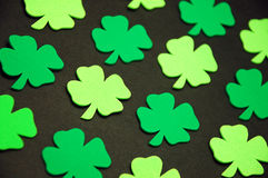 Shamrocks verdes Fotos de Stock Royalty Free