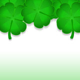 Shamrocks on white Royalty Free Stock Photos