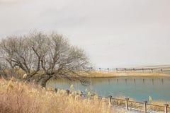 Shan έρημος Mingsha και ημισεληνοειδής λίμνη φεγγαριών σε Dunhuang, Gansu, Γ Στοκ Φωτογραφίες