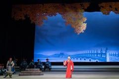 "Shan de pontificating-Shanxi que se sienta Operatic""Fu al  de Beijing†Imagen de archivo"