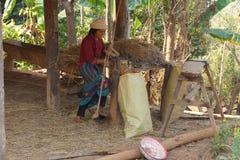 Shan women shredding straw Stock Photos