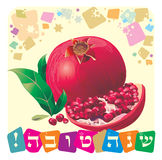 Shana tova. The Jewish holiday - Rosh Hashanah, the Jewish New Year. The pomegranate is a symbol of this holiday Stock Photos