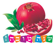 Shana tova. The Jewish holiday - Rosh Hashanah, the Jewish New Year. The pomegranate is a symbol of this holiday Royalty Free Stock Photography