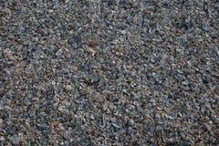 Shandong Penglai Penglai acht Unsterbliche mouth Strandsedimente Stockbild