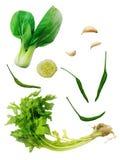 Shanghai Bok Choy, Chinese celery, garlic, cucumber, Chili, cele Stock Photo