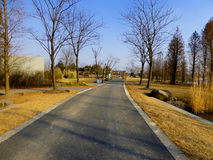 Shanghai Chen Shan Botanical Garden path Royalty Free Stock Photography