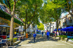 SHANGHAI, CHINA - 29 JANUARY, 2017: Walking around the french concession district of Shanghai, popular destination for. Tourists with charming streets, shops Royalty Free Stock Photos