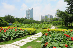 Shanghai city park in summer. Royalty Free Stock Photography