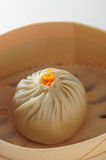 Shanghai dumpling Stock Photography