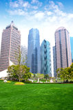 Shanghai grass and building Royalty Free Stock Photo