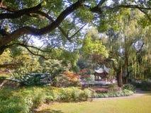 Shanghai Lilac Garden Stock Photography