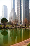 Shanghai Lujiazui at city park buildings backgrounds streetscape Stock Photography