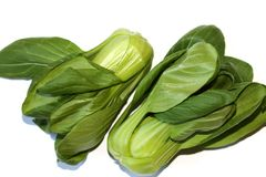 Shanghai pak choi is smaller than the ordinary pak choi Royalty Free Stock Photos
