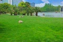 Shanghai park Stock Image