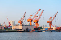 Shanghai port royaltyfria foton