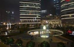 Shanghai Pudong Royalty Free Stock Photo