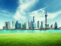 Shanghai skyline and green grass in park Royalty Free Stock Images