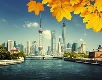 Shanghai skylineand autumn leaves Stock Photos