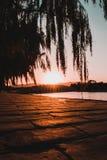 shanghai solnedgång royaltyfria foton