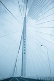 Shanghai yangtze river bridge Stock Images