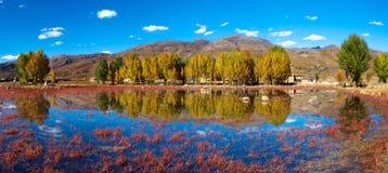 shangri красного цвета la ganzi caohai стоковое изображение
