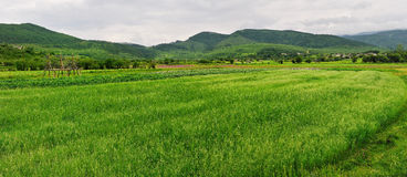 shangri de paysage de ranch de La Images libres de droits