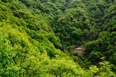 Shangri-La  or Arcadia in  Qinling Mountains. Dasi called as Shangri-La or Arcadia  by hikers,is a small village in deep Qinling Mountains (English name Tsinling Royalty Free Stock Photo