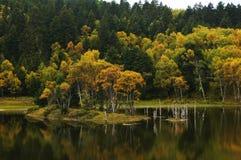 Shangri La autumn Royalty Free Stock Photography