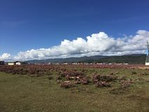 Shangri-La beautiful grassland sky mountain. Beautiful Shangri-La, the boundless grassland, the blue sky, the continuous mountains, the desirable scenery stock image