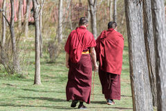 SHANGRI-LA, CHINA. SHANGRI-LA, CHINA - April 20, 2016:Two Lama was walking on the lawn around the temple Royalty Free Stock Images
