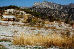 Shangri-La eller Arcadia i Qinling berg Arkivbilder