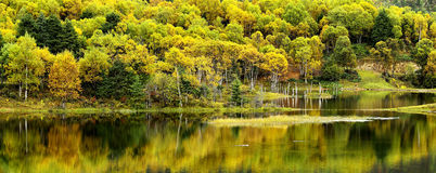 Shangri-La have a lake Autumn Royalty Free Stock Photos