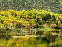 Shangri-La have a lake Autumn Royalty Free Stock Photography