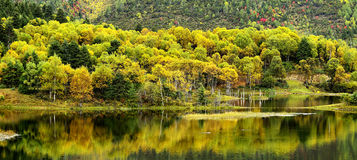 Shangri-La have a lake Autumn Stock Photography