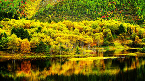 Shangri-La have a lake scenery Stock Photos