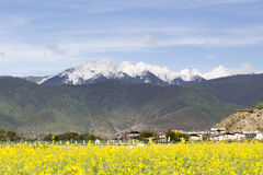 Shangri La outskirt , Yunnan China. Stock Photography